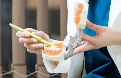 三好歯科 自由が丘の副院長の歯ブラシ指導をする手元